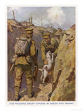 Private Brown of the North Staffordshires in the Trenches in France is Found by His Terrier Giclee Print by W.r. Stott