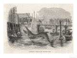 Catching a Whale off Deptford Pier Giclee Print