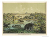 Animals and Plants of the Tertiary Era in Europe Premium Giclee Print by Ferdinand Von Hochstetter