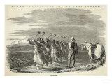 Slaves Working on a Sugar Plantation Jamaica West Indies Giclee Print