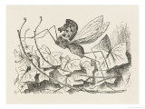 The Rocking-Horse Fly Giclee Print by John Tenniel