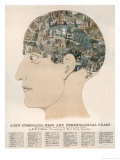 Phrenological Head Reproduction procédé giclée par R.b.d. Wells