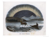 Traveller in a Reindeer Sleigh Sees a Spectacular Aurora Over the Northern Ice Giclee Print by J.w. Whimper