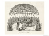 If You Train Your Tree Properly You Will Not Need to Buy a Garden Umbrella Giclee Print by Heinrich Weber