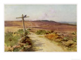 Dorset Scenery: Bere Heath in Autumn, Egdon Heath in Thomas Hardys Return of the Native Giclee Print by Walter Tyndale