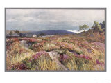 Dorset Scenery: Heath at Lytchett Minster Reproduction procédé giclée par Frederick Whitehead