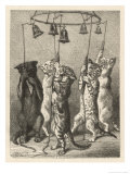 These Five Cats Have Been Taught Giclee Print by Harrison Weir