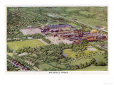 Cadbury's from Above Giclee Print