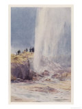 The Eruption of Wairoa Geyser in New Zealand Giclee Print by F. Wright
