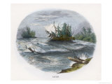Rapids on a North American River Giclee Print by J.w. Whimper