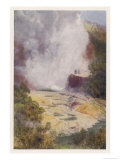 The Champagne Cauldron Hot Spring Near Rotorua in New Zealand Reproduction procédé giclée par F. Wright