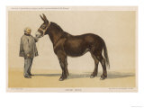 Young French Mule with Its Owner Monsieur Rimbault First Prize at the Niort Competition of 1865 Reproduction proc&#233;d&#233; gicl&#233;e