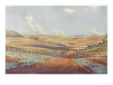 The Monaro Plains Giclee Print by Percy F.s. Spence