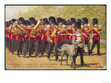 The Band of the Irish Guards March with Their Regimental Mascot an Irish Wolfhound of Course Giclee Print