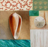 Shell Collage I Affiches par David Marrocco