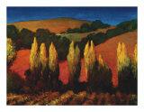 Poplar Trees Sonoma Limited Edition by Philip Craig