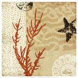 Koralindtryk I, Coral Impressions I Posters af Tandi Venter