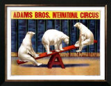 Adams Brothers Circus Prints