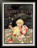 Ferry's Seeds Posters