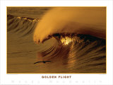 Golden Flight Art by Woody Woodworth