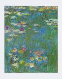 Seerose Poster von Claude Monet