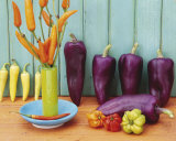 Still Life with Peppers Prints by Linda Burgess