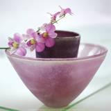 Orchideen Kunstdruck von H. Orth