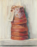 Terracotta Pots Prints by Carol Rowan