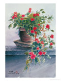 Impatiens Giclee Print by Chen Kwodong