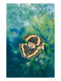 Leaf Butterfly Giclee Print by Chen Kwodong