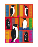 Patchwork Penguins Photographic Print by Tanya Trevor