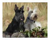 Jenny & Bella Photographic Print by Cheryl James