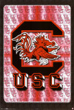 University Of South Carolina Prints