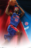 Detroit Pistons- Richard Hamilton Posters