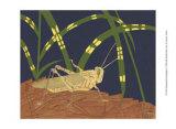 Ornamental Grasshopper I Posters by Nina Tenser