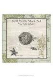 Biologia Marina II Poster