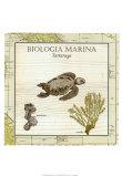 Biologia Marina IV Print