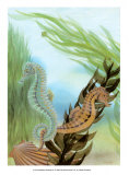 Seahorse Serenade IV Posters by Charles Swinford