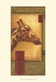 Grasslands Batik II Print by Ethan Harper