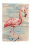 Pink Flamingo I Art by Jennifer Goldberger