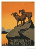 Kansallispuistot Posters tekijänä J. Hirt