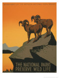 National Parks Posters by J. Hirt