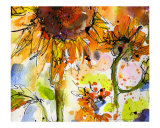 Sunflower Giclee Print by The New Monet