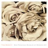 Roses Print by Tina Modotti