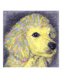Sunny Boy Giclee Print by Evelyn Morris Hecht