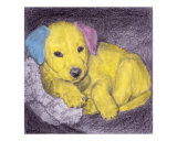 Bambino (pink, blue, yellow) Giclee Print by Evelyn Morris Hecht