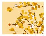 Gold Cherry Blossom Photographic Print by Estela Lugo