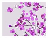 Violet Cherry Blossoms Photographic Print by Estela Lugo