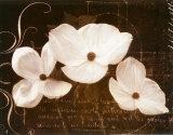 Garden Love Letter I Poster von Amy Melious