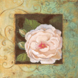 Antique Rose IV Prints by Jillian Jeffrey